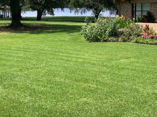 Why Get Lawn Maintenance?